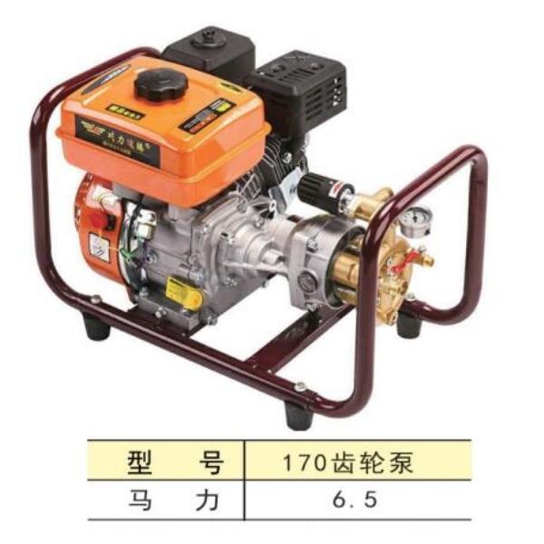 170齿轮泵